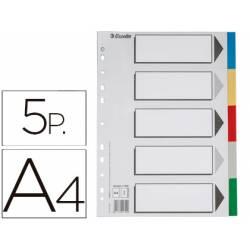 Separadores plastico Esselte Din A4 juego de 5